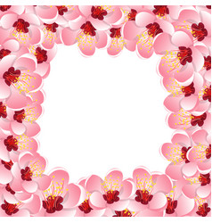 Momo peach flower blossom border background vector