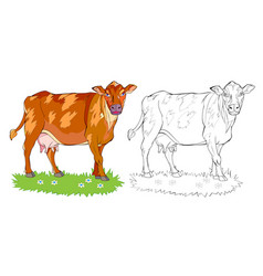 page for coloring book cute cow on meadow vector image