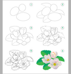 page shows how to learn to draw step step vector image