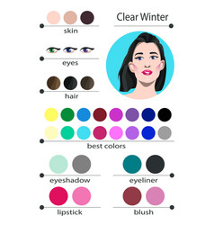 Seasonal color analysis palette for clear winter vector