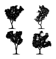 silhouette tree set on white background vector image