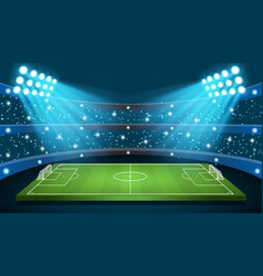 Soccer game stadium vector