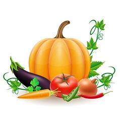 pumpkin 08 vector image vector image