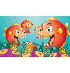A school of piranha under the sea vector image