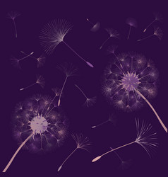 Abstract background of a dandelion for design vector