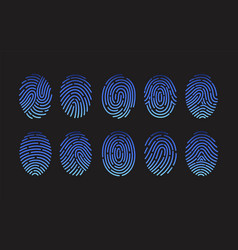 collection of fingerprints of different types vector image