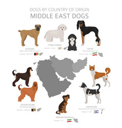 Dogs country origin middle east dog breeds vector