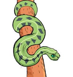 Hand drawn image amazonian anaconda vector