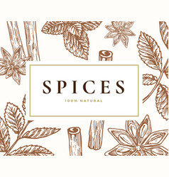hand drawn spices card abstract vector image