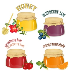 jars of jam and honey vector image