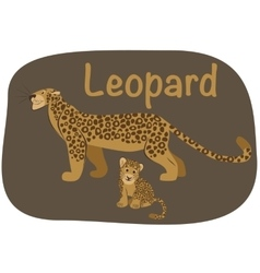 Leopard whith child vector