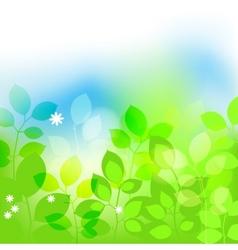 summer leaves background vector image