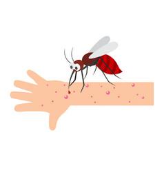 Mosquito bite vector