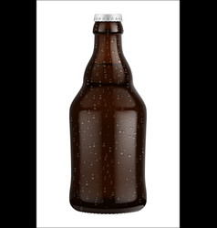 beer bottle glass isolated on white background vector image vector image