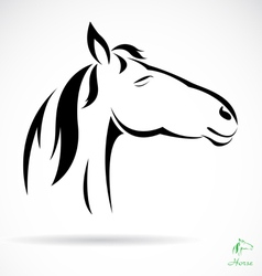 Horse 33 vector image vector image