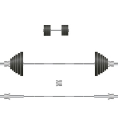 Barbell dumbbell vector image