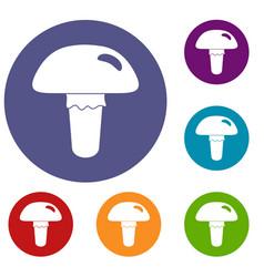 Poisonous mushroom icons set vector