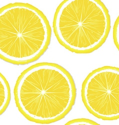 Lemon slices vector image