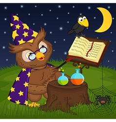 Owl wizard vector