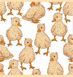 seamless background of small ducklings vector image