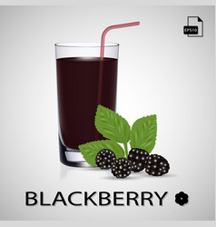 Set of blackberry juice and fresh berries isolated vector