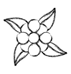 Sketch flower leaves natural decoration vector