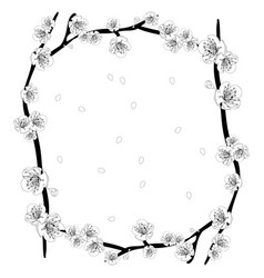 white plum blossom flower outline border vector image