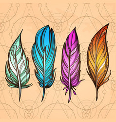 hand drawn set of feathers on colorful the vector image