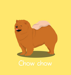 an depicting a cute chow chow dog cartoon vector image vector image
