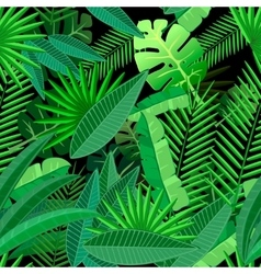 Leaves of tropical palm tree Seamless pattern on vector image