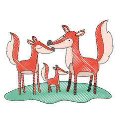 cartoon fox couple and cub over grass in colored vector image