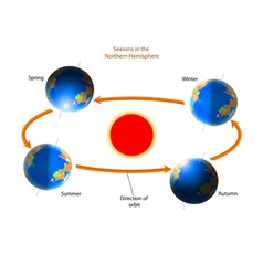 Cycle of seasons vector