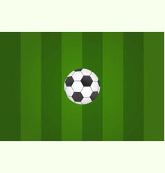 Football ball on green grass top view vector