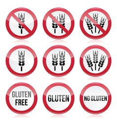 Gluten free no gluten warning signs vector image