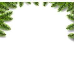 Green fir tree border isolated white background vector