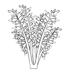 Monochrome blurred silhouette of carrot plant vector
