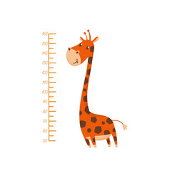 scale for measuring kids growth and funny giraffe vector image