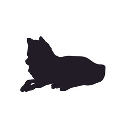 wolf lays silhouette vector image