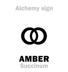 Alchemy amber succinum vector