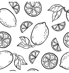 Beautiful black and white seamless doodle pattern vector