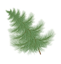 Fluffy green Christmas tree tilted to the side vector