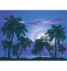 Palm Tree at Night4 vector image