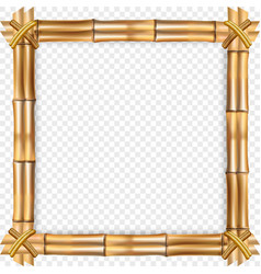 Square brown bamboo border with rope and copy vector