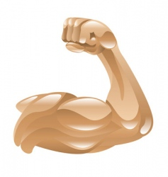 strong muscular arm vector image