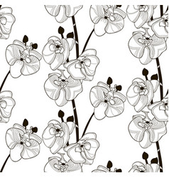 black seamless pattern with drawn orchid vector image