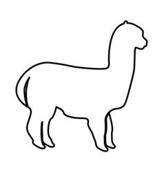 Alpaca black icon vector