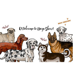 Dogs sketches dogs of different breeds vector