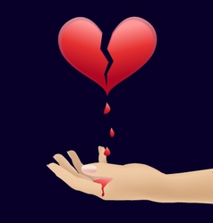 Heart and blood in the hands vector