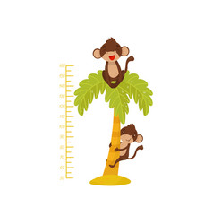 height chart for children and funny monkeys on vector image