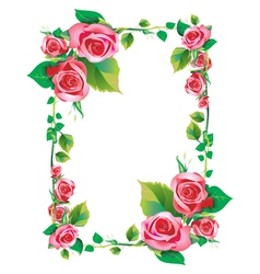 rose frame vector image